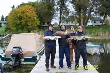 Fishing In Kingston Gananoque And The 1000 Islands